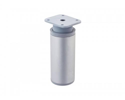 Ножка регулируемая RFA042/100 Алюминий D-40мм ДС